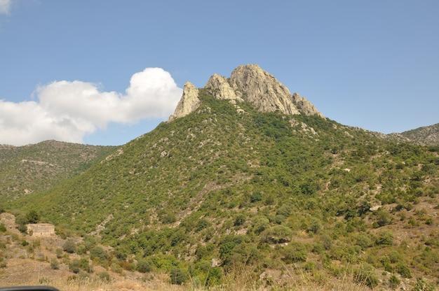 Vue paysage de collines verdoyantes