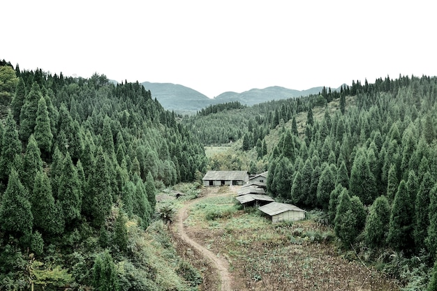 Vue de paysage dans la campagne de zhangjiajie