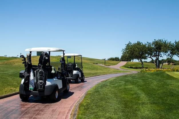 Vue de paysage de deux voitures de golf sur un terrain de golf.