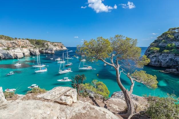 Vue sur le paysage marin de la plus belle baie de cala macarella de l'île de minorque, iles baléares, espagne