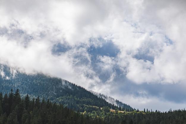 Vue paysage des montagnes des carpates blanc jour nuageux