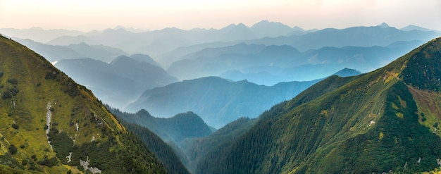 Vue de paysage des montagnes des carpates vertes couvertes de brume légère à l'aube.