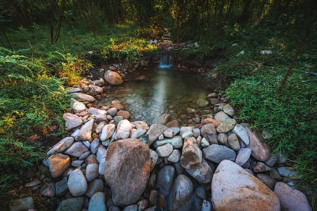 Vue paysage nature du ruisseau d'eau douce avec le fond de la montagne et de la forêt