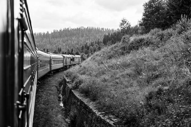 Vue paysage par la fenêtre du train d'équitation parmi la nature estivale