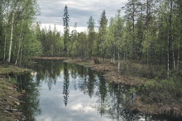 Vue sur un petit lac forestier