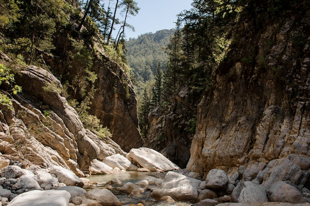 Vue de la petite rivière dans le canyon de goynuk