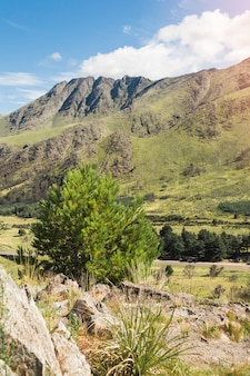 Vue pittoresque sur les montagnes verdoyantes