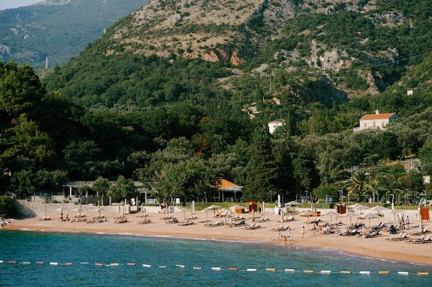 Vue d'une plage avec chaises longues et parasols