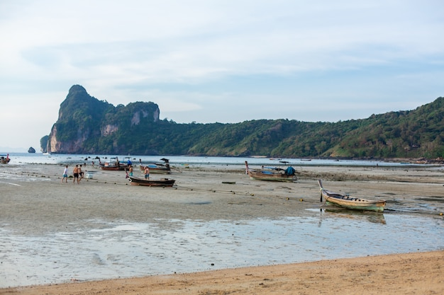 Vue de la plage sur une île tropicale verte à marée basse.