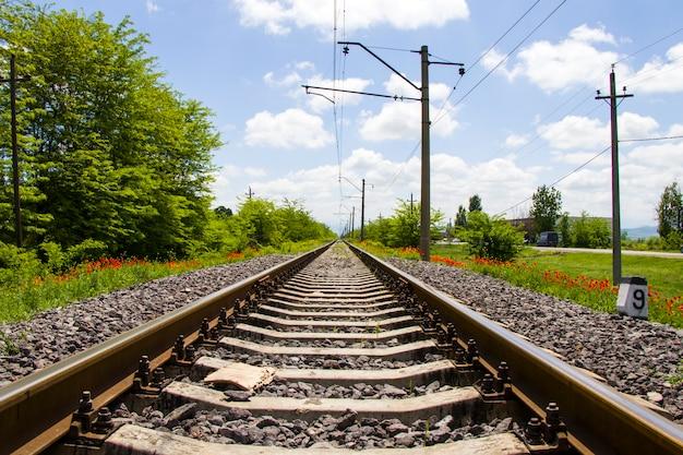 Vue des rails en géorgie, route de train et gare, lignes et horizon avec champ de fleurs de pavot et jaune