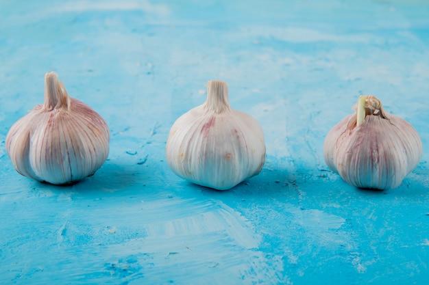 Vue rapprochée des bulbes d'ail sur fond bleu avec copie espace