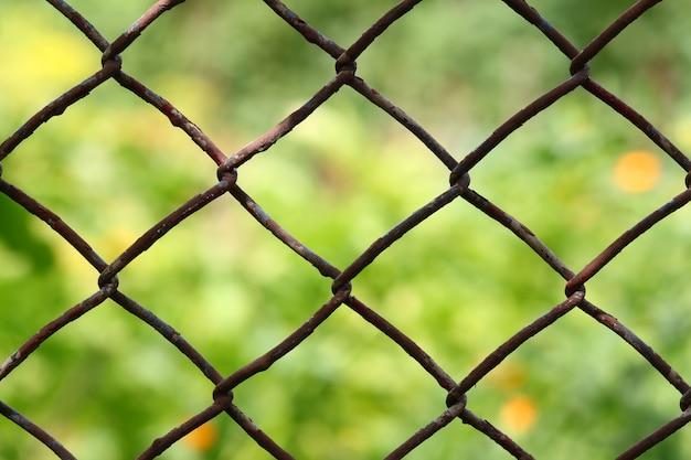 Vue rapprochée d'une clôture à mailles losangées