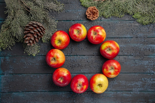 Vue rapprochée de dessus des branches de pommes cônes neuf pommes disposées en cercle entre les branches avec des cônes