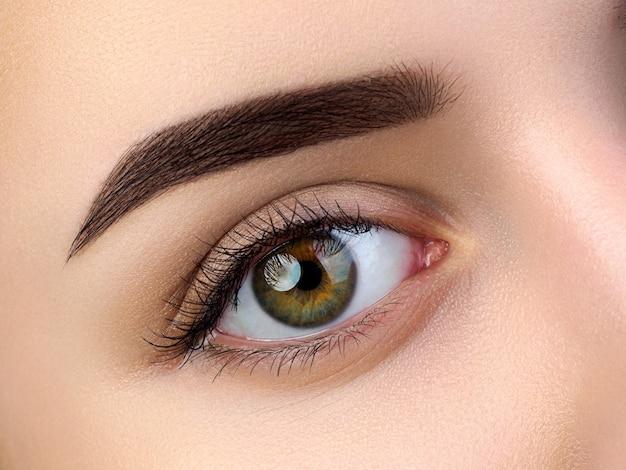 Vue rapprochée du bel œil féminin brun. sourcil tendance parfait. bonne vision, lentilles de contact, barre de sourcils ou concept de maquillage des sourcils à la mode