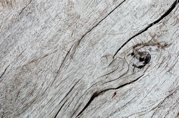 Vue rapprochée du bois séché