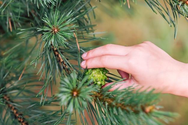 Vue rapprochée de l'enfant remis sur les feuilles vertes après la pluie, mise au point sélective et arrière-plan flou.