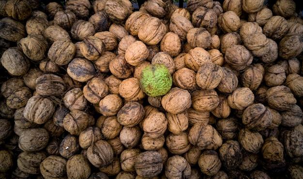 Vue rapprochée de la noix brute fraîche en pelure allongée sur un tas de noix séchées