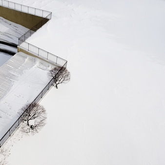 Vue rapprochée d'un paysage d'hiver fascinant avec un couple d'arbres et de la neige cristalline