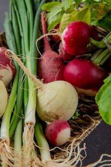 Vue rapprochée de la plaque pleine de légumes comme l'oignon vert et le radis
