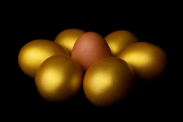 Vue rapprochée de poulet aux oeufs frais entouré d'oeufs d'or sur fond noir