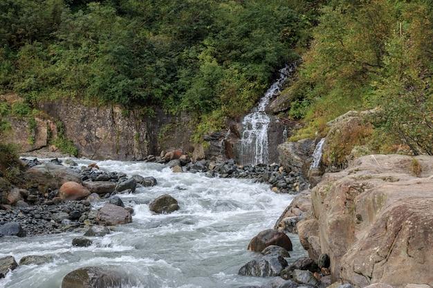 Vue rapprochée de la rivière scène en forêt, parc national de dombay, caucase, russie, europe. paysage d'été, temps ensoleillé et journée ensoleillée