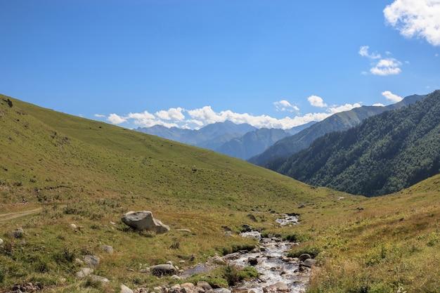 Vue rapprochée des scènes de montagnes dans le parc national dombai, caucase, russie, europe. paysage d'été, temps ensoleillé, ciel bleu dramatique et journée ensoleillée