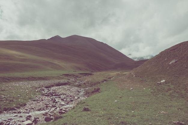 Vue rapprochée de scènes de montagnes dans le parc national dombay, caucase, russie, europe. ciel bleu dramatique et paysage d'été ensoleillé
