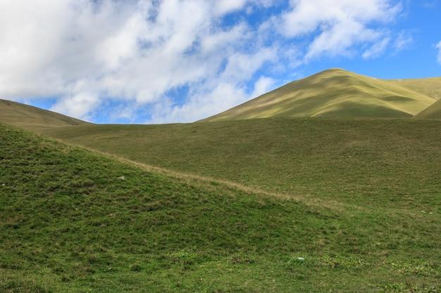 Vue rapprochée des scènes de montagnes dans le parc national dombay, caucase, russie, europe. paysage d'été, temps ensoleillé, ciel bleu dramatique et journée ensoleillée