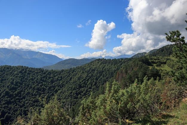 Vue rapprochée des scènes de montagnes et de vallées dans le parc national dombai, caucase, russie, europe. paysage d'été, temps ensoleillé, ciel bleu dramatique et journée ensoleillée