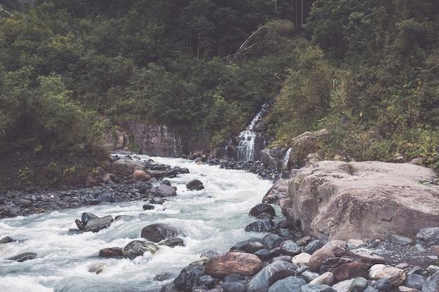 Vue rapprochée des scènes de rivière en forêt, parc national dombai, caucase, russie, europe. paysage d'été, temps ensoleillé, ciel bleu dramatique et journée ensoleillée