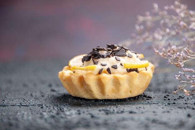 Vue rapprochée de la tarte au citron avec branche de fleurs séchées au chocolat sur fond sombre