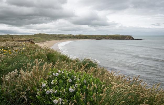 Vue sur le rivage de l'océan et la plage éloignée par temps couvert, région du sud de la nouvelle-zélande