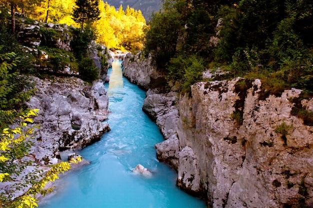 Vue sur la rivière soca slovène en été