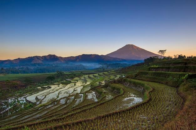 Vue sur les rizières en terrasses et le mont sumbing avec une légère brume le matin hdr traité.