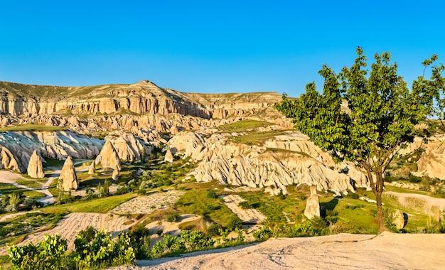 Vue de rose valley au parc national de göreme. patrimoine mondial de l'unesco en cappadoce, turquie