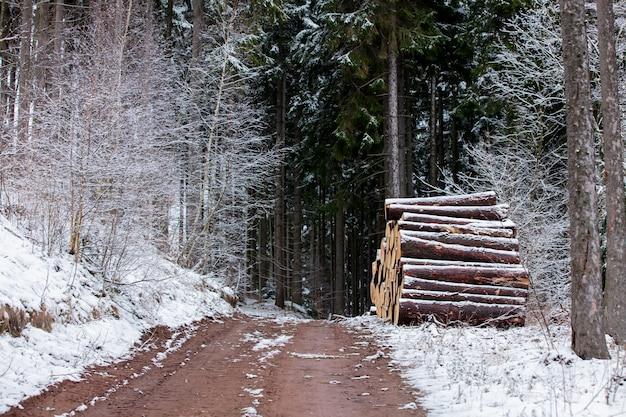 Vue de la route à travers la forêt enneigée