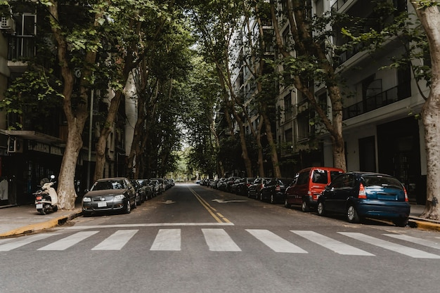 Vue d'une rue de la ville avec passage pour piétons et voitures