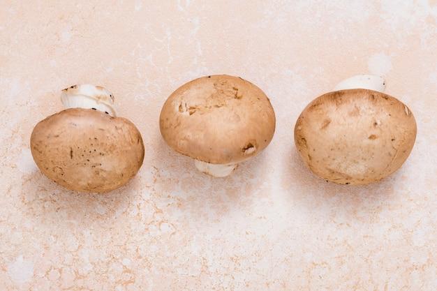 Une vue surélevée de champignons frais sur un fond texturé