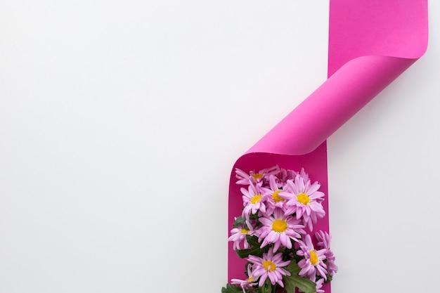 Vue surélevée de fleurs de marguerite sur ruban torsadé rose