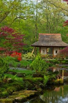Vue typique du jardin japonais, den haag, hollande