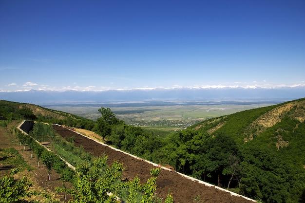 La vue sur la vallée d'alazani, géorgie