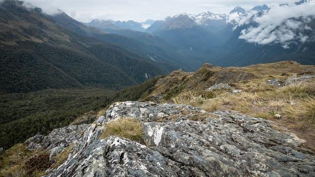 Vue sur la vallée alpine avec des montagnes en toile de fond remplie de bois dense routeburn tnew zealand