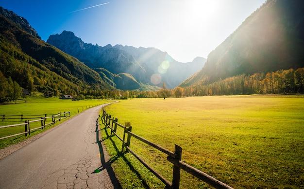 Vue sur la vallée ensoleillée de logarska, slovénie