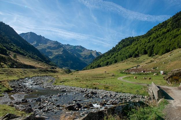 Vue sur la vallée d'ossau dans les pyrénées françaises
