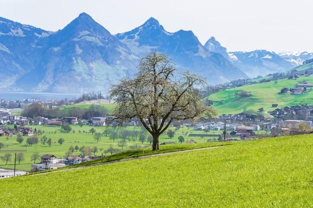 Vue de la ville de stans en suisse depuis le pied