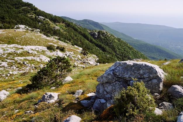 Vue sur la zone montagneuse avec des pierres, des herbes et des arbustes