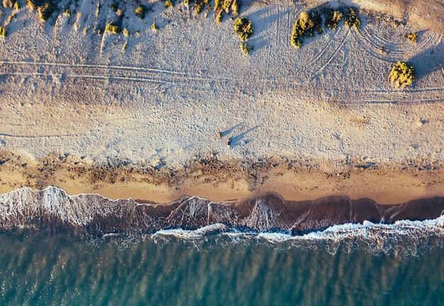 Vues aériennes d'une fille avec son chien sur une plage vierge, dans le parc naturel de punta entinas, almeria, espagne