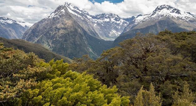 Vues sur les sommets des montagnes avec des arbres en premier plan tourné sur routeburn track nouvelle-zélande