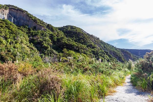 Vues vertes des pinacles de putangirua. île du nord, nouvelle-zélande