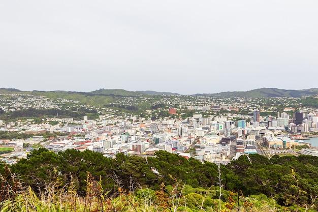 Wellington depuis le mont victoria. île du nord, nouvelle-zélande